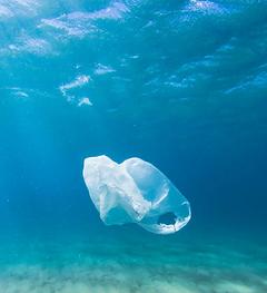 plastic bag eco friendly game