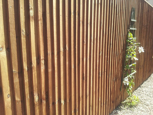 Featheredge_04.jpg