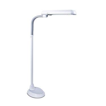 24W Floor Lamp
