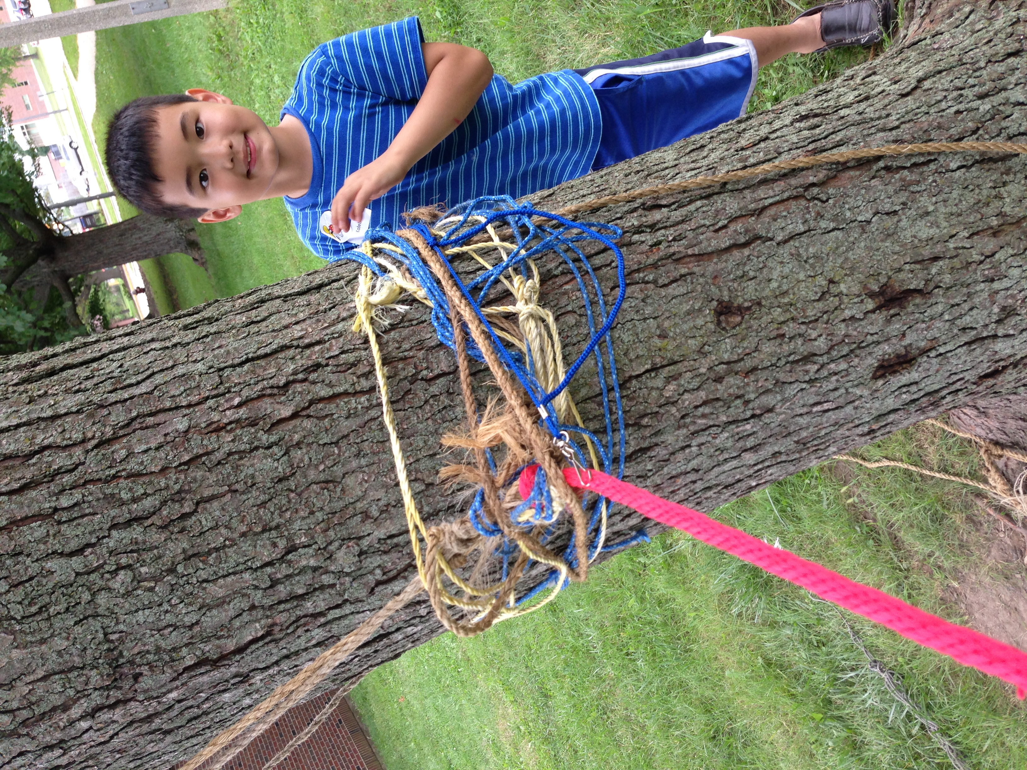 Stringing Up Hammocks