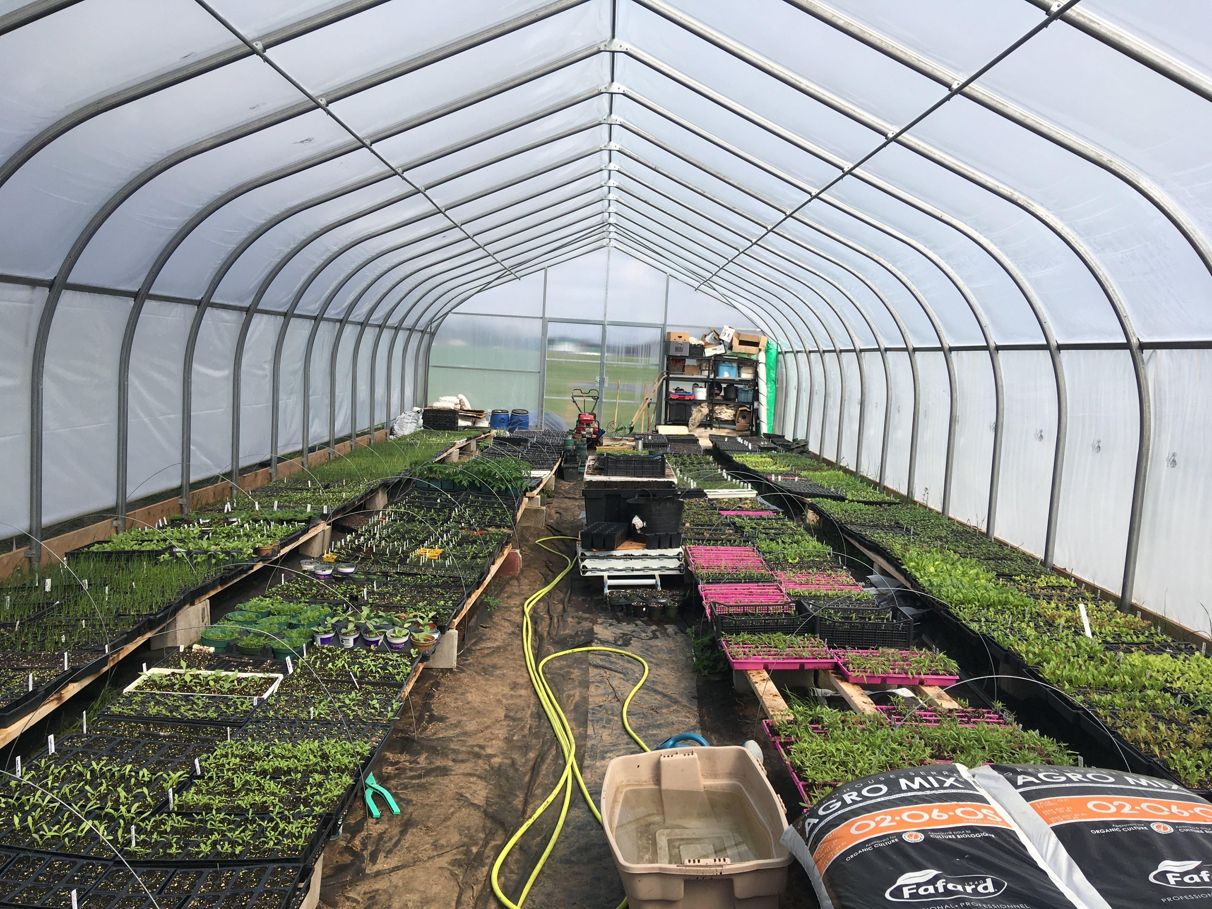 Greenhouse April