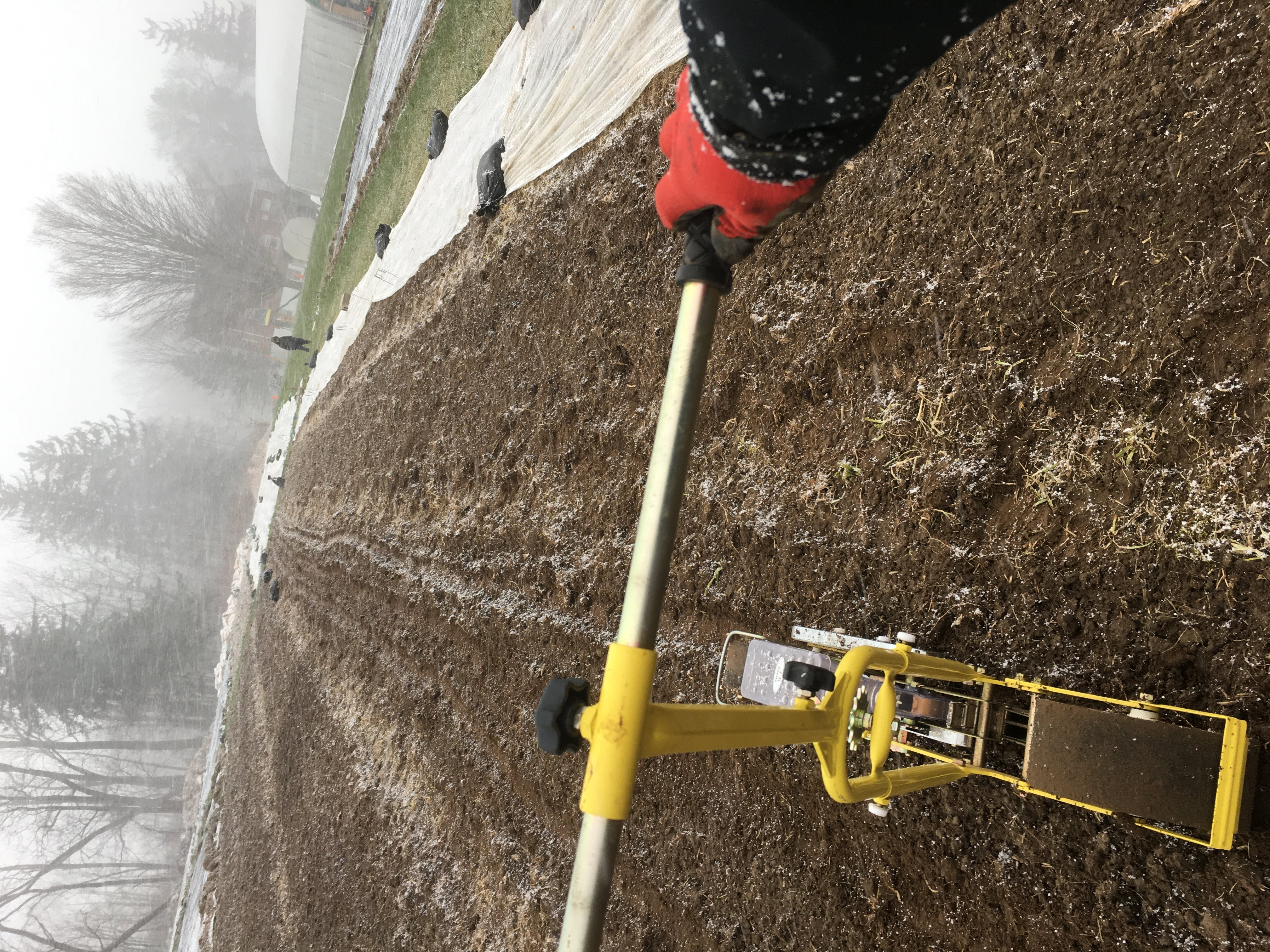 Seeding in the Snow
