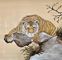 Lauernder Tiger copy.jpg