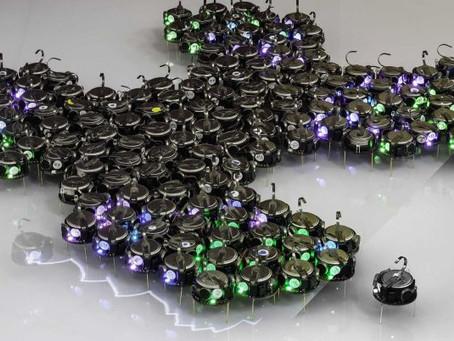 Биотехнологические роботы могут автономно объединяться в кластеры