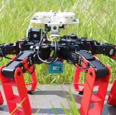 Робот-муравей.jpg