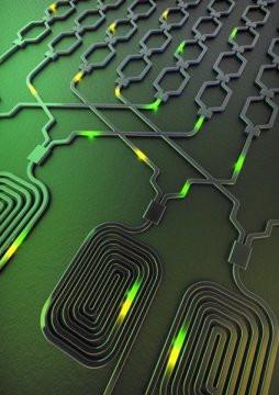 Ученому удалось разработать логический вентиль, который необходим для взаимодействия между квантовыми системами и внутри них