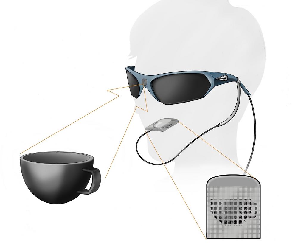 Схематическое изображение устройства Wicab