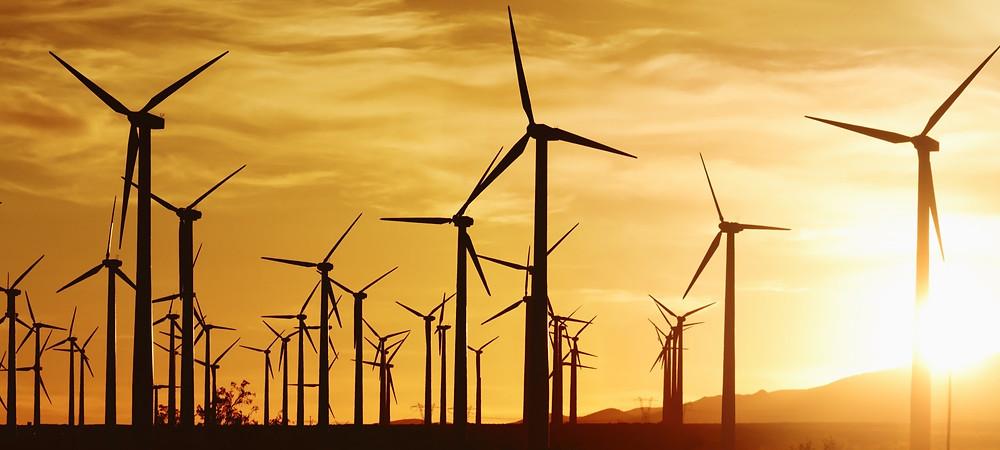 Ветровые электростанции негативно влияют на окружающую среду