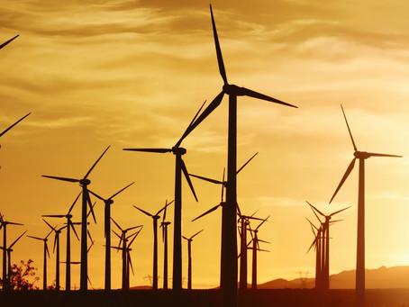 Ученые выяснили, какое влияние ветровые электростанции оказывают на климат