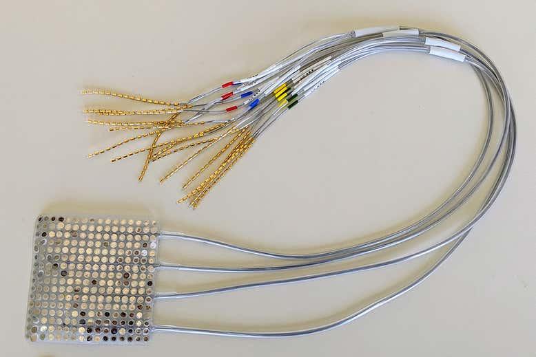 Электроды, подобные этим, использовались для записи активности мозга