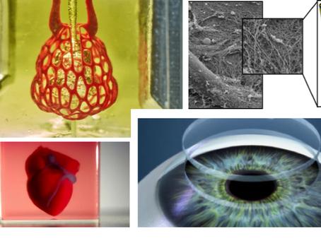 3D биопечать органов человека