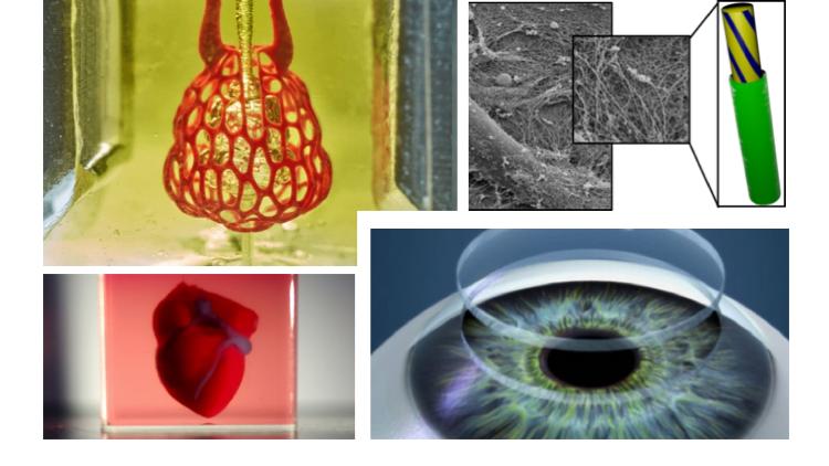Био 3D печать позволяет создавать с помощью технологий 3D печати биологические объекты