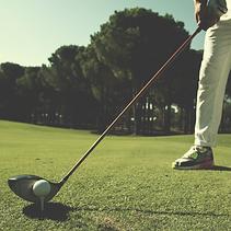 alex12_Quadrat_golf.png