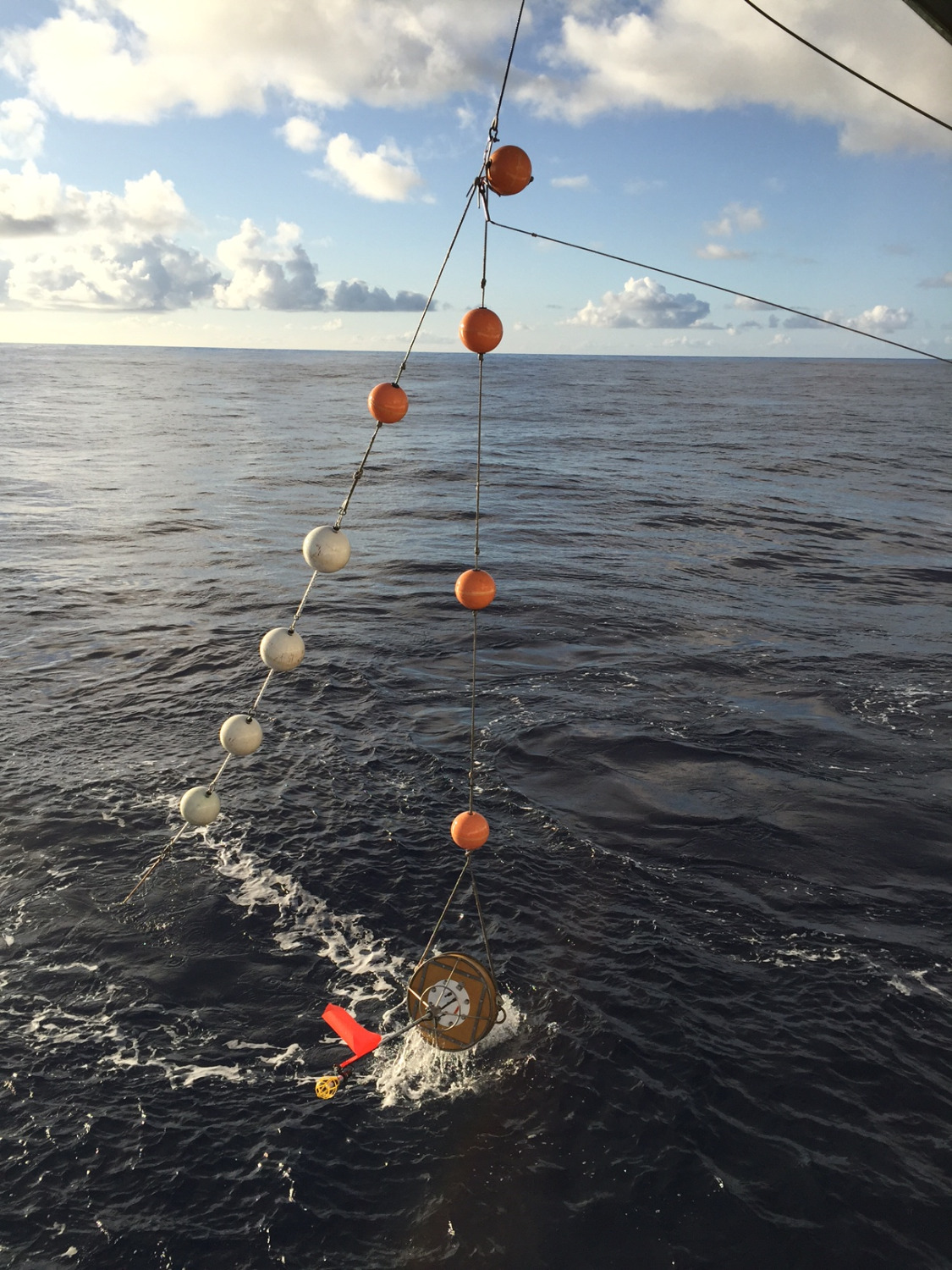 in situ array recovery