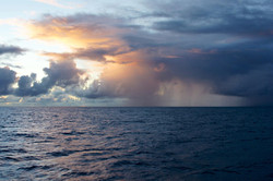 Storm in the NPSG, BioLINCs, 2011