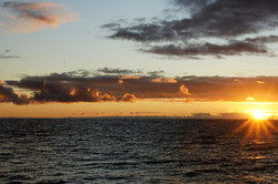 Sunset in the NPSG, BioLINCs, 2011
