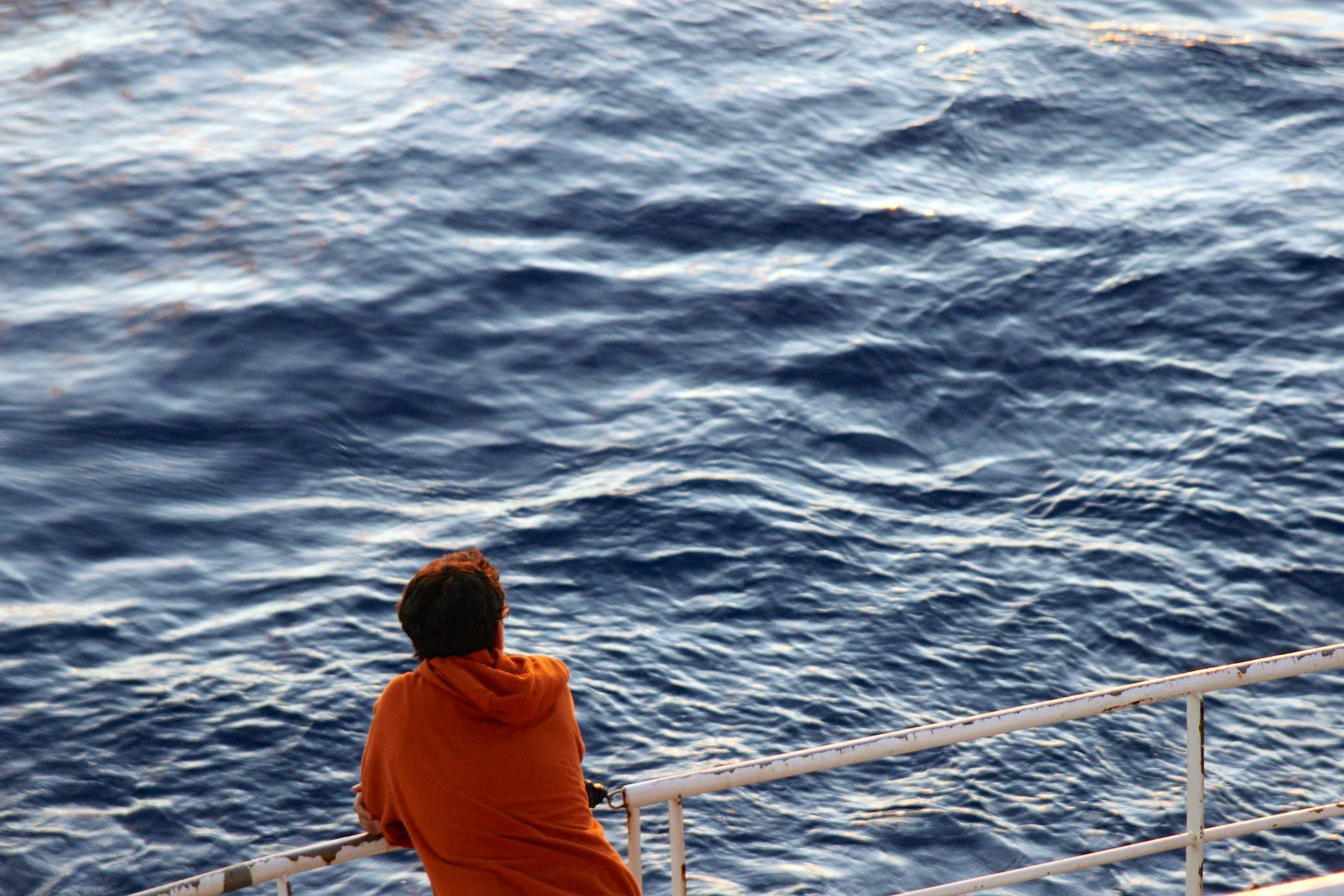 Deniz Bombar, BioLINCs, 2011