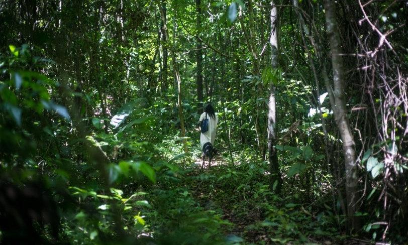 Selva Lacandona, Yaxchilan y Bonampak