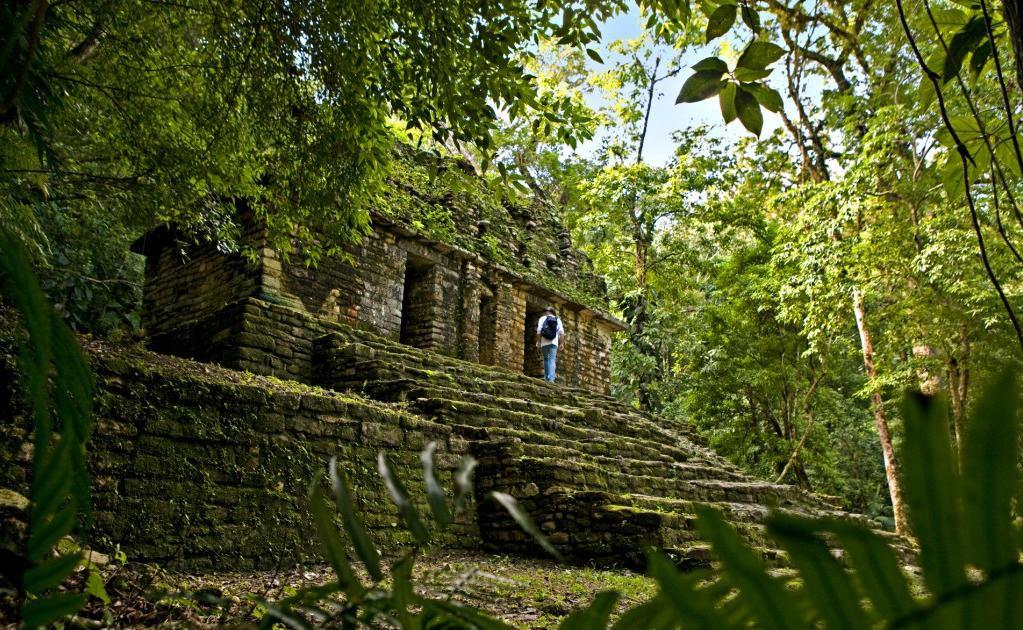 Selva Arqueológica: Bonampak y Yaxchilan