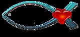 2019 sharathon logo.png