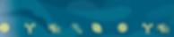 Screen Shot 2019-05-12 at 12.56.43 PM_ed