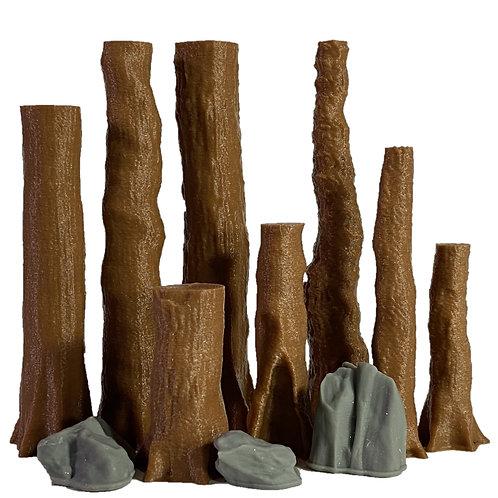Redwood Trees #2