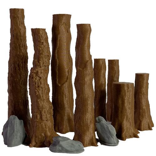 Redwood Trees #3
