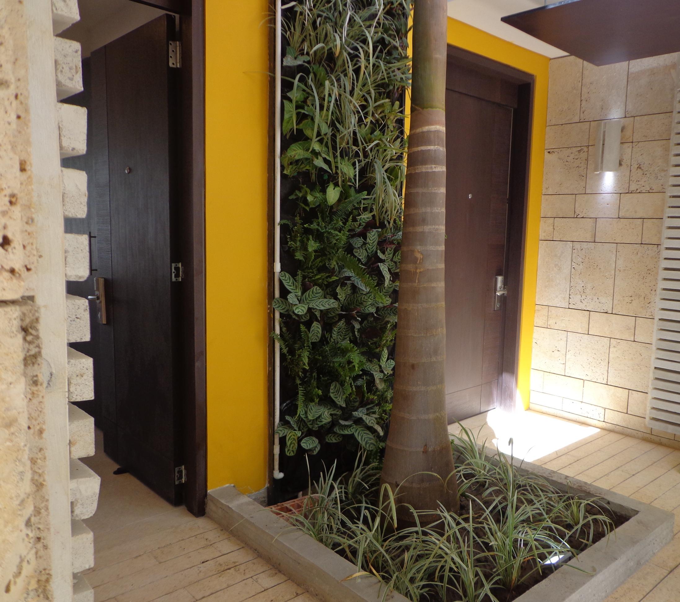 Jardin vertical interior