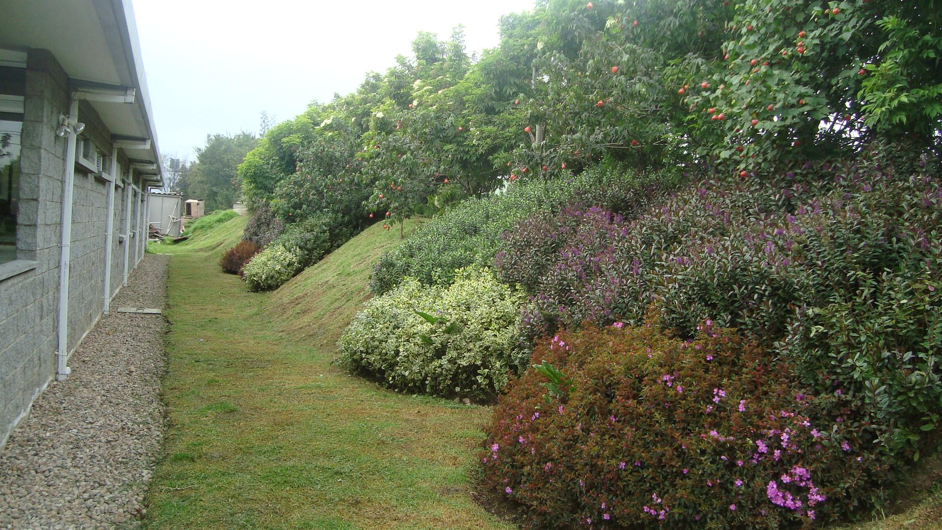 Mto. jardines y zonas verdes (3)