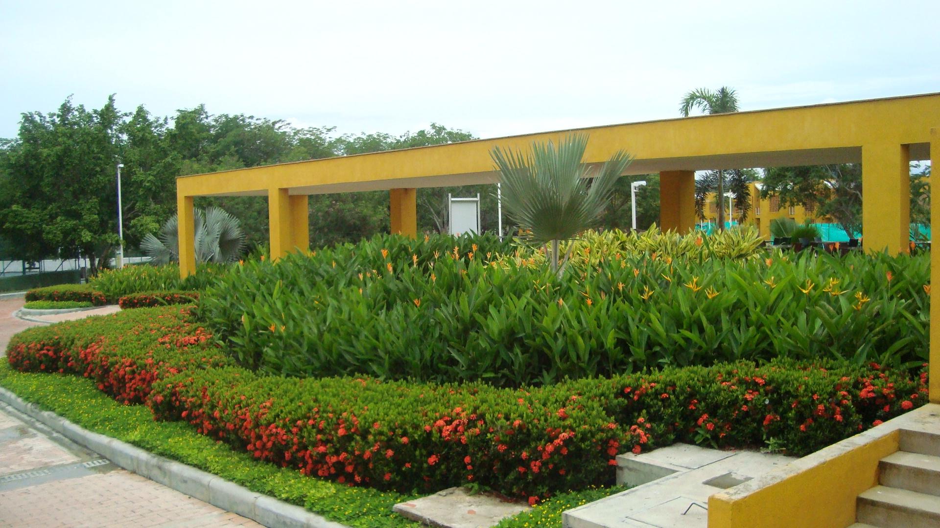 Jardín cálido (7)