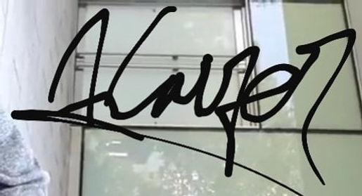 Kaizer Logo.jpg