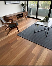 Spotted Gum HM Walk 30% Gloss $65m2 + 3.