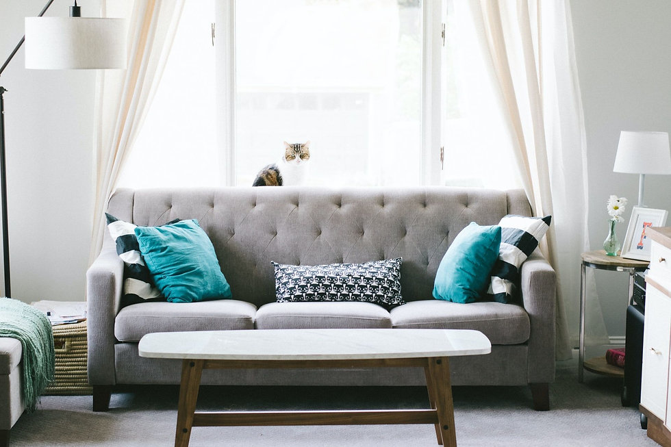 Grey upholstered couch with teal pillows