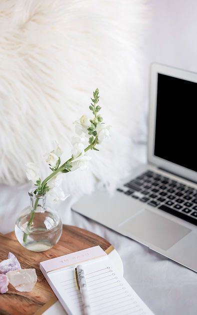 Laptop with fuzzy white pillow, plant an