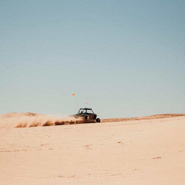 Taelor Diener, Sand Dunes