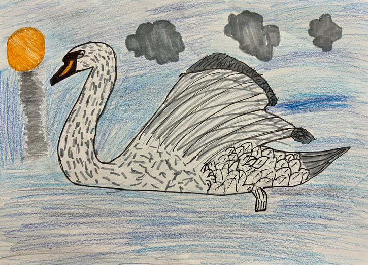 Brox Ray, Swan, Crayon and Marker, 2021