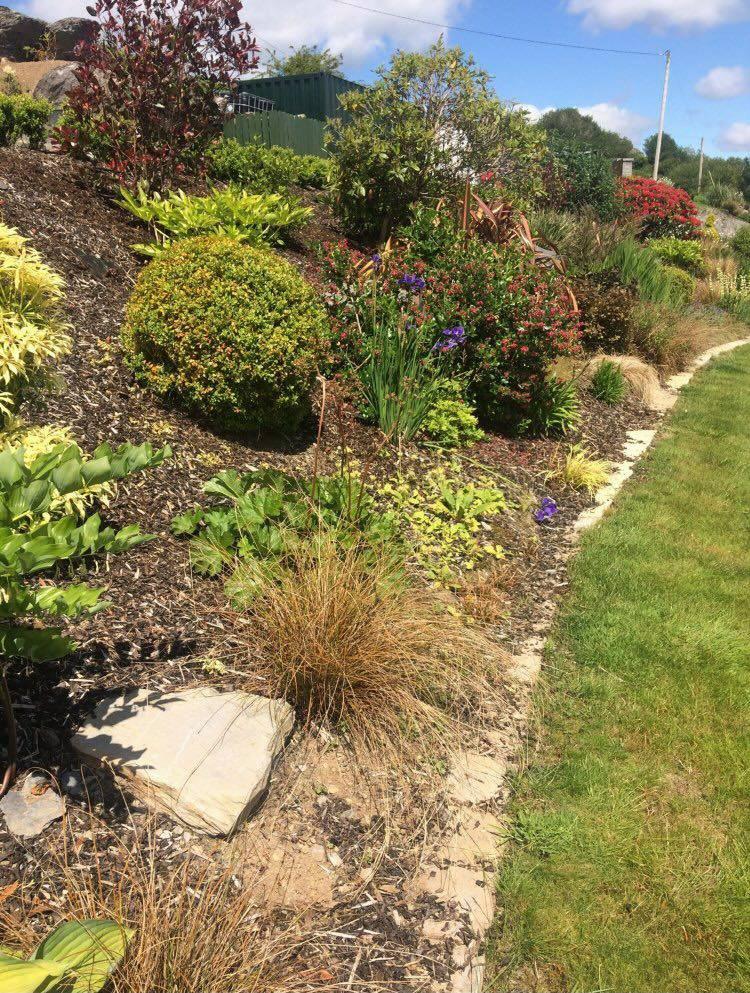 Bark Mulch Garden