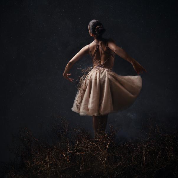 ballerina_stars-3.jpg