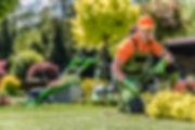 Gartenpflege.jpeg