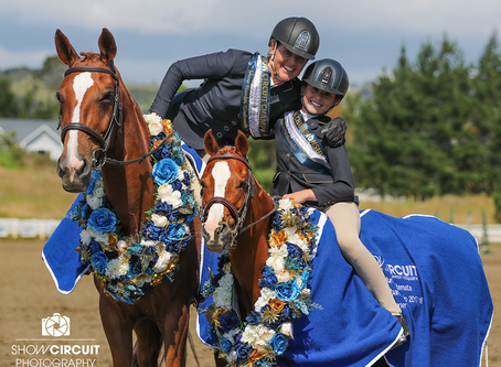 Waitemata Show Hunter images are now online.