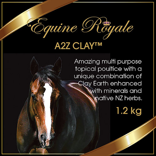 A2Z CLAY™ 1.2kg