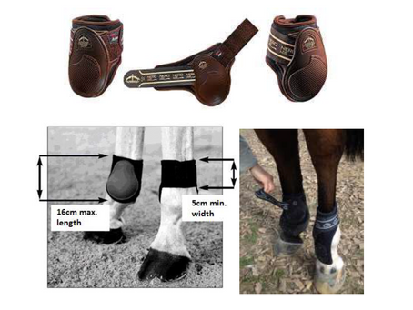 Hind Boot Rule for Jumping
