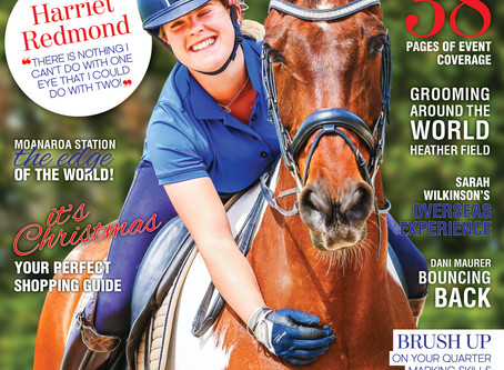 Our December/January issue and the very last for 2017
