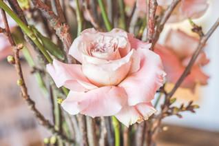 Ruby's Wedding-0070.jpg