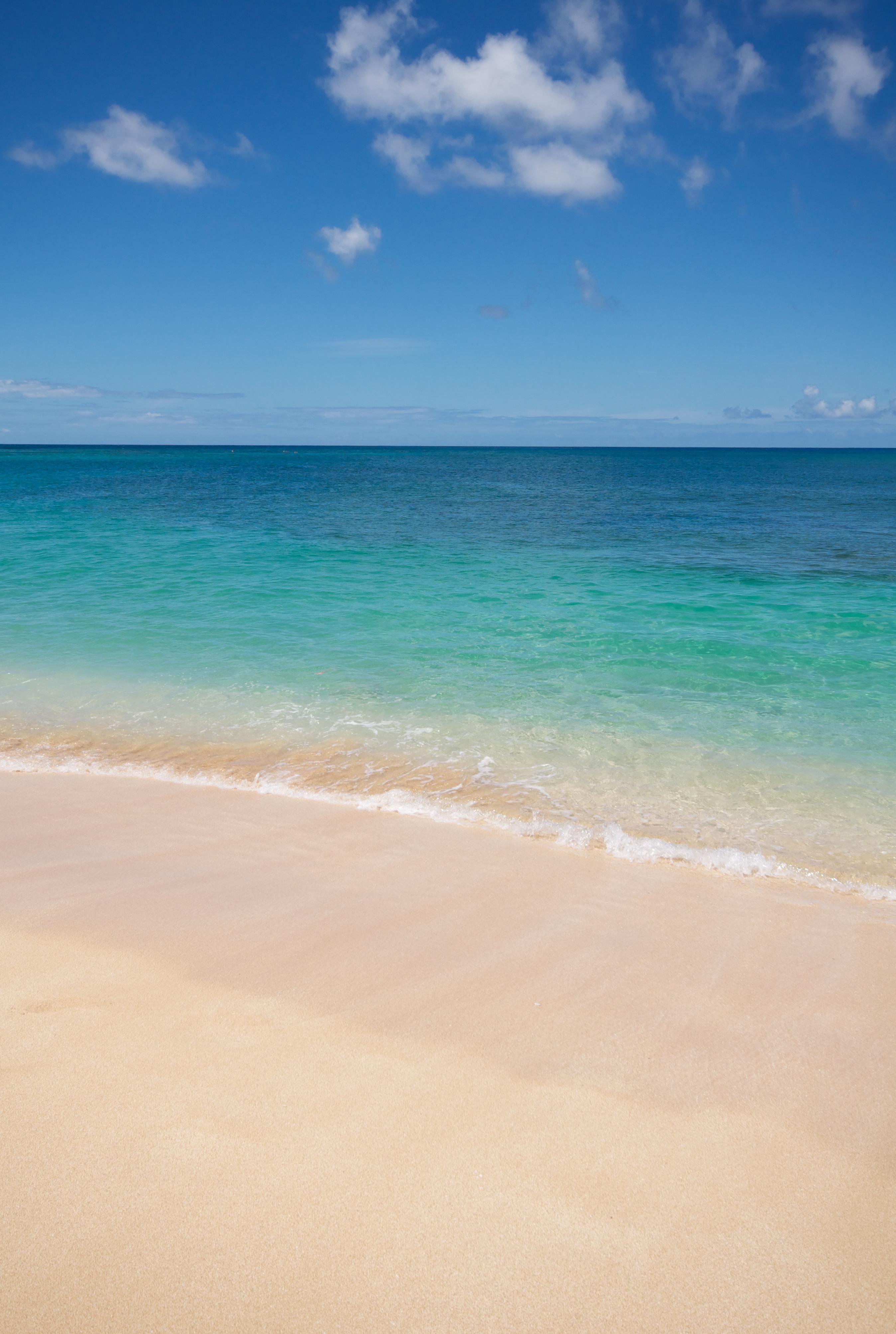 Hawaiian Blue