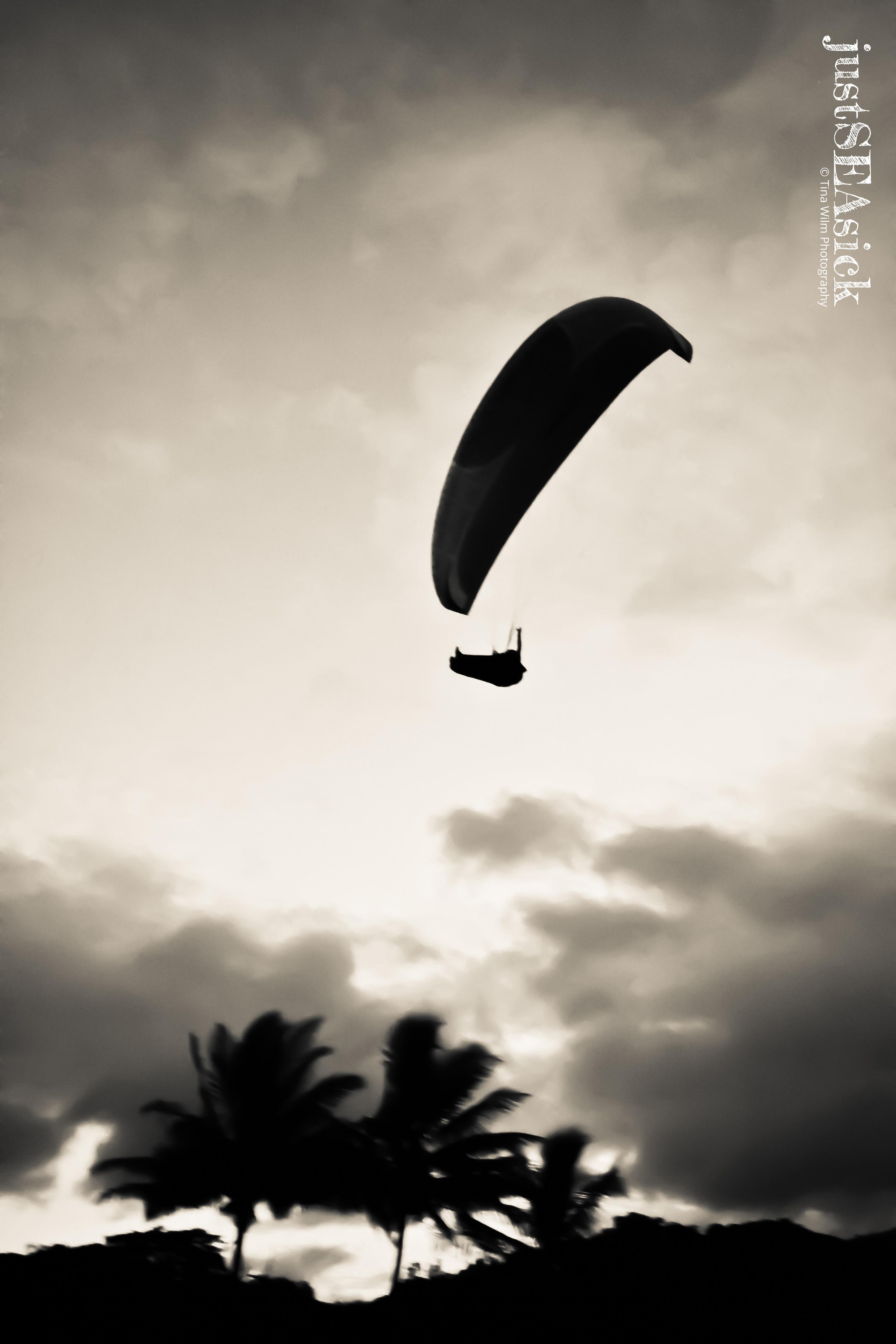 Paragliding Rex Lookout