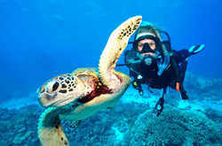 Advanced Scuba Diving