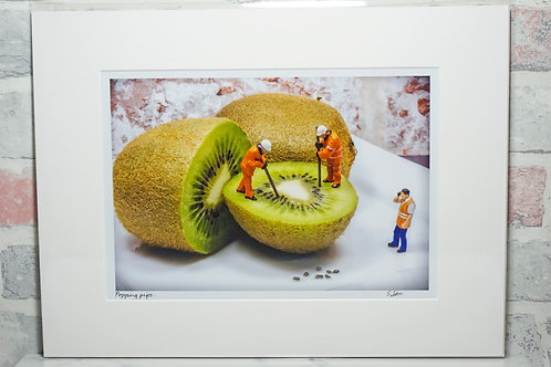 "Popping pips - 7"" x 5"" mounted print"