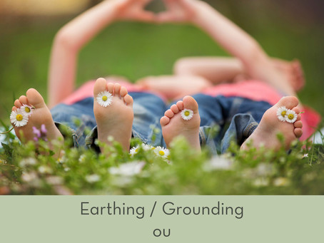 Grounding / Earthing / Aterramento - Efeitos no nosso Organismo