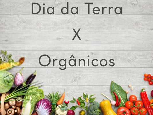 Benefícios dos Alimentos Orgânicos à nossa Saúde